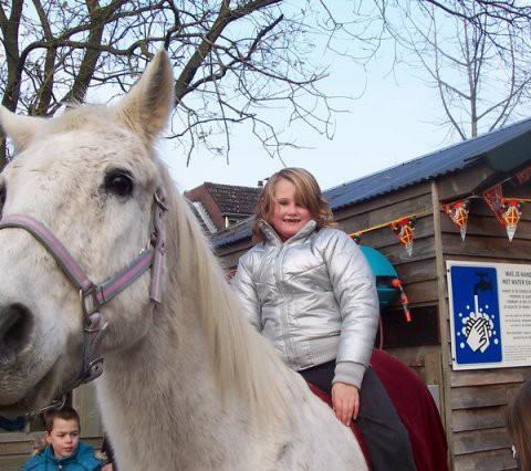 phoca_thumb_l_paard op de boel 036