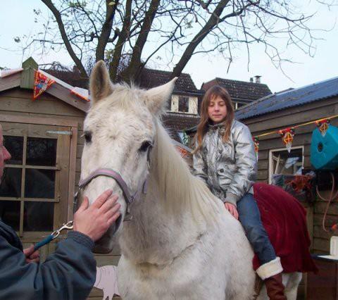 phoca_thumb_l_paard op de boel 041