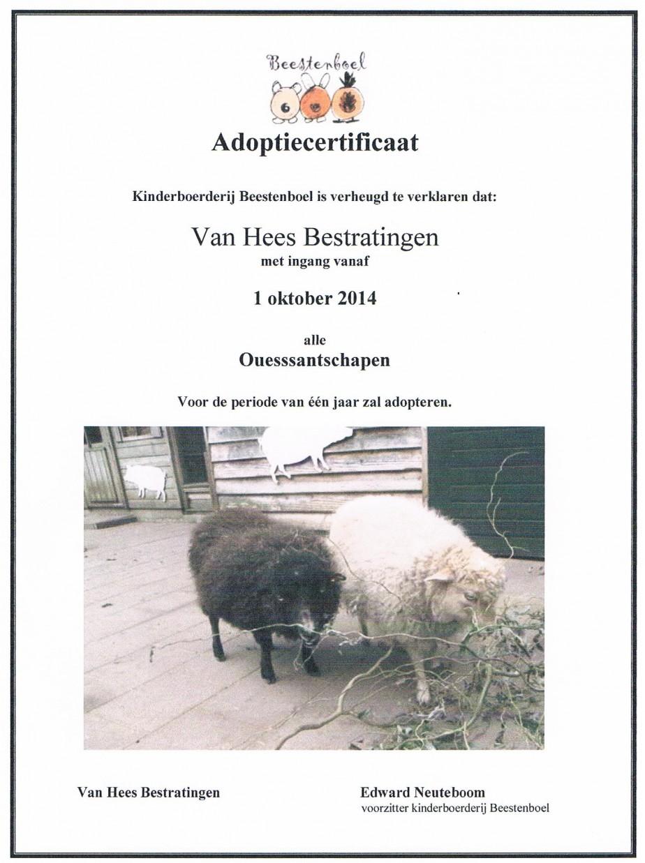 adoptie Ouessantschapen