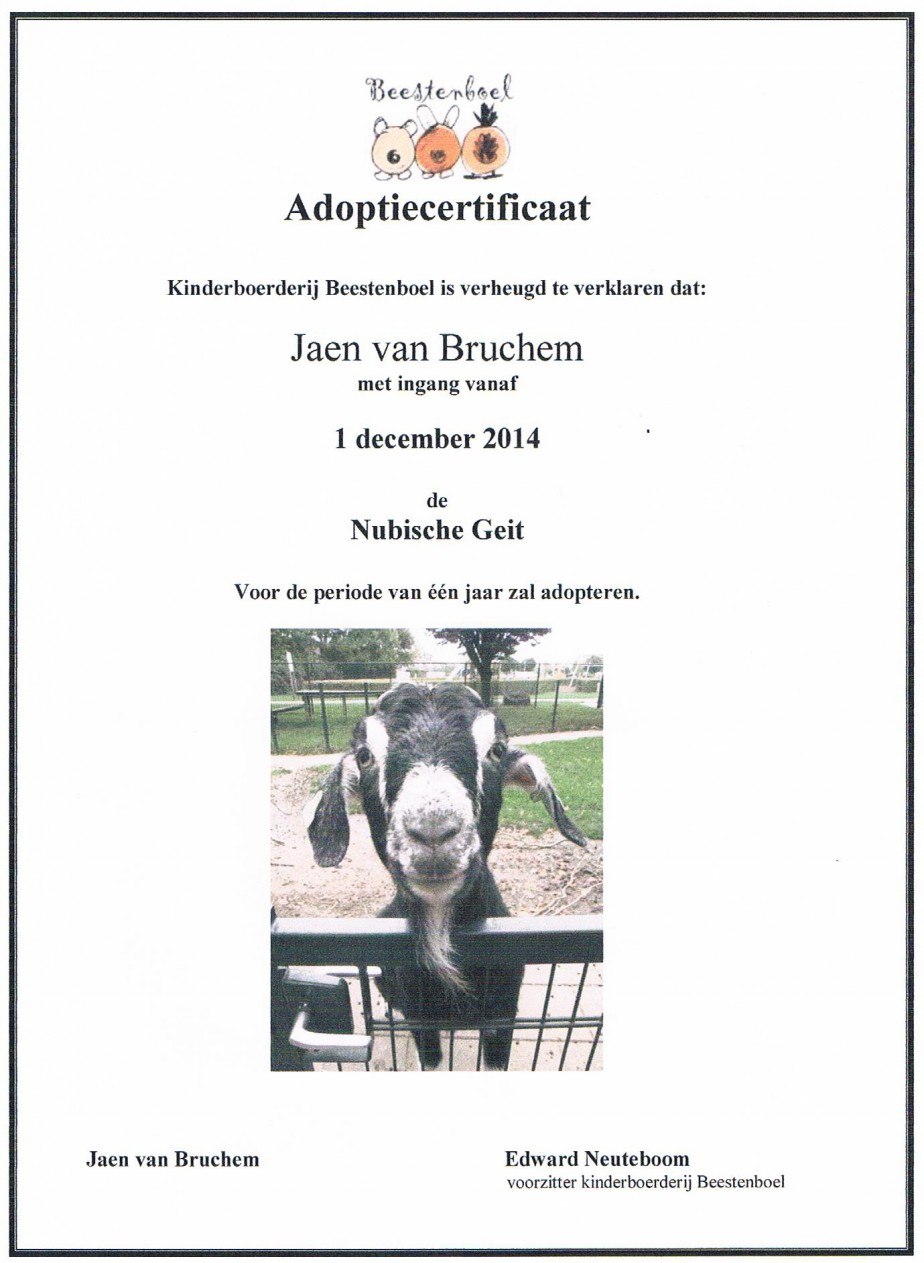 adoptie nubische geit