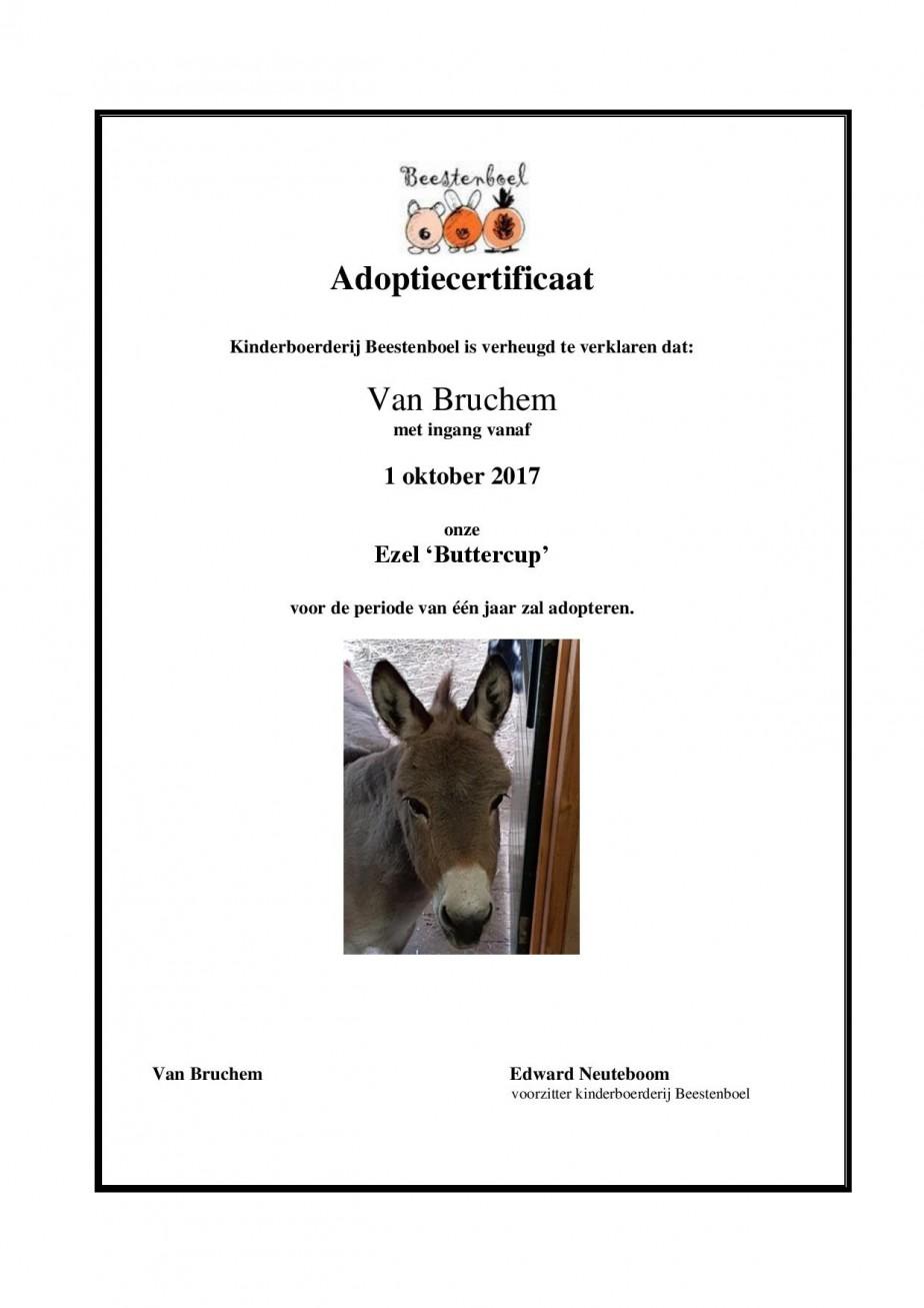 Certificaat ezel 2017-page-001