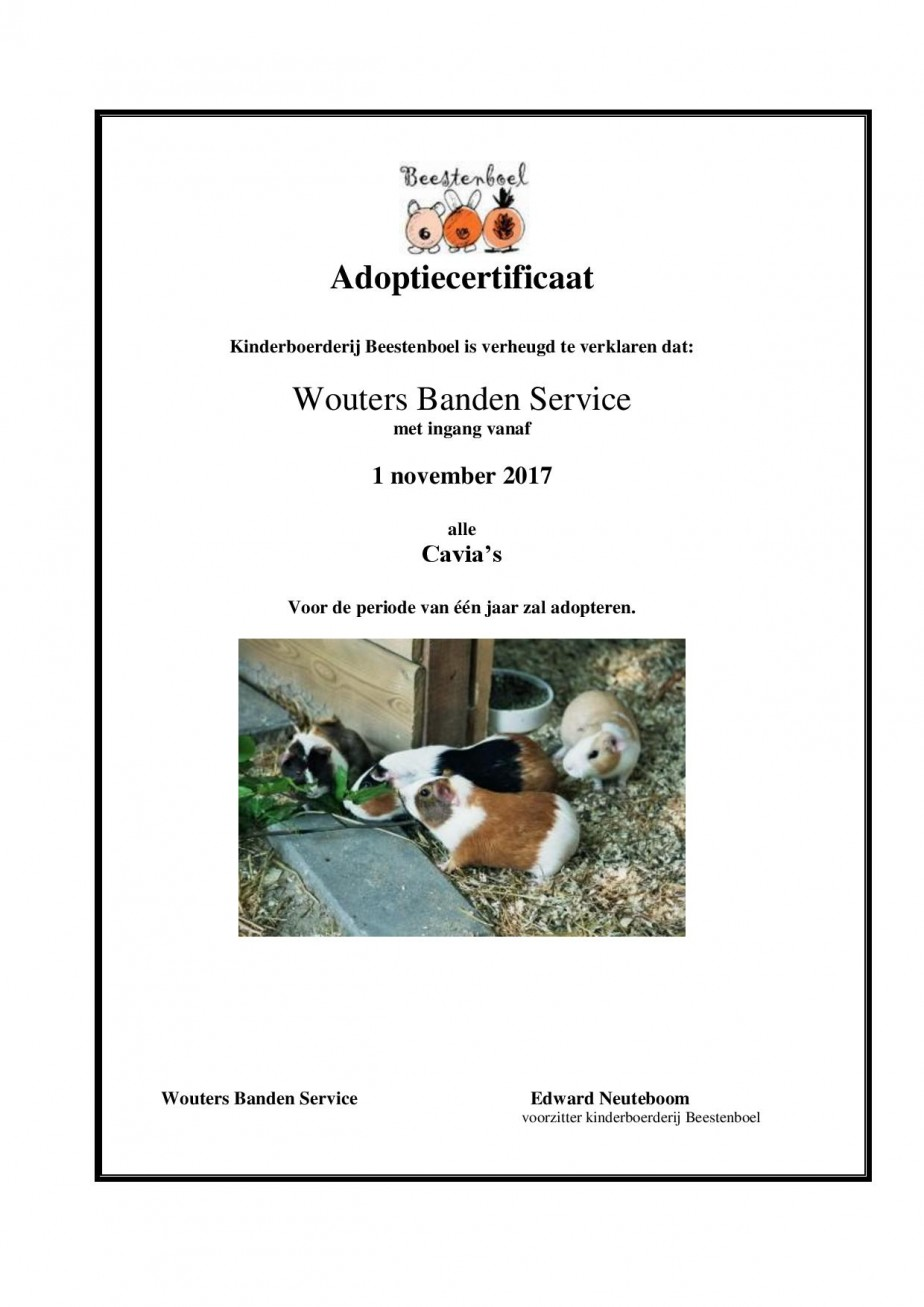 Wouter Banden Service cavia s-page-001