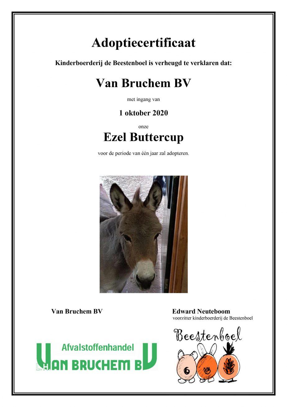 Adoptiecertificaat Ezel Buttercup Okt 2020